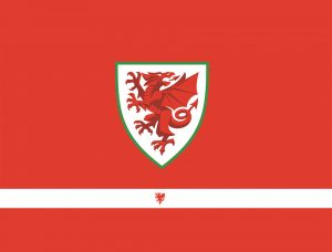 Read more about the article Wales v Hungary