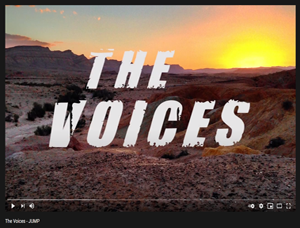Read more about the article The Voices